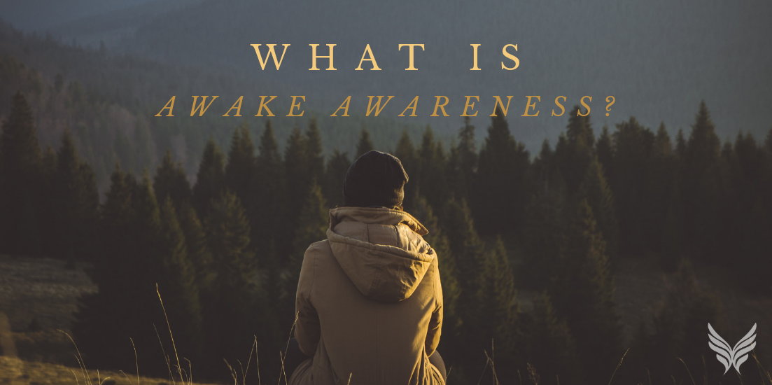 What is Awake Awareness Blog Header Image