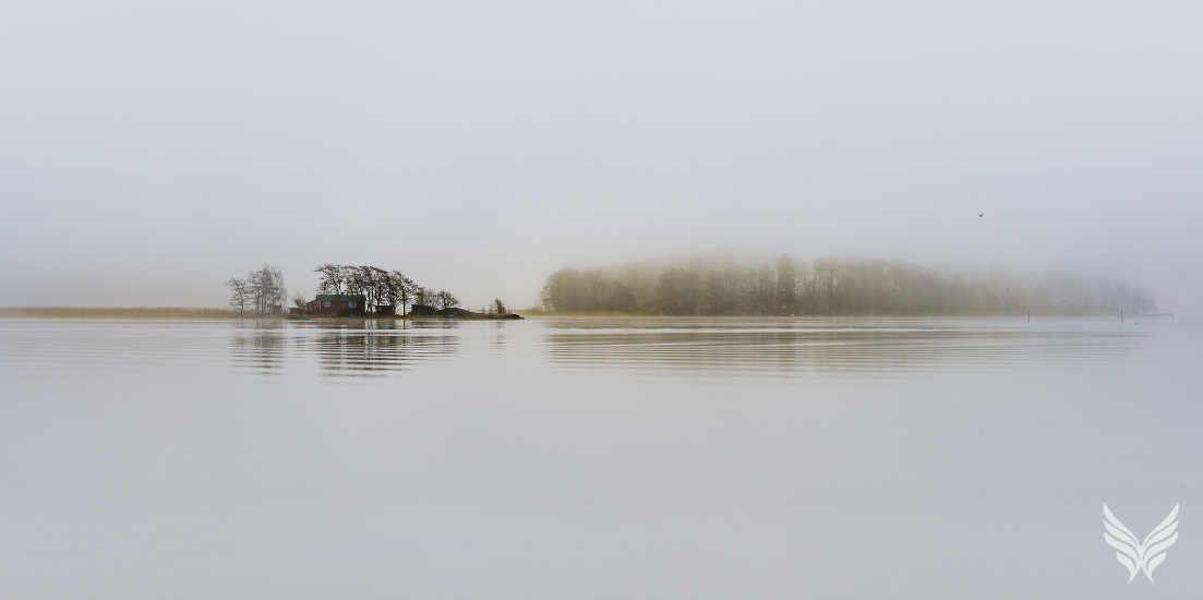 Glimpse Practice: Dynamic Stillness with Effortless Mindfulness Blog Feature Image