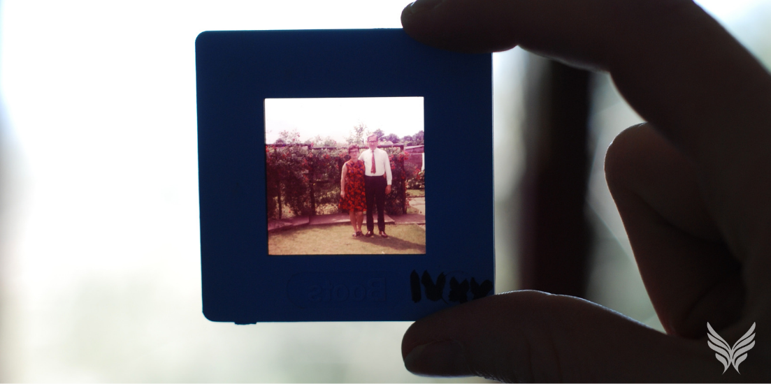 Tracing the Roots of Your Attachment Style Feature Image