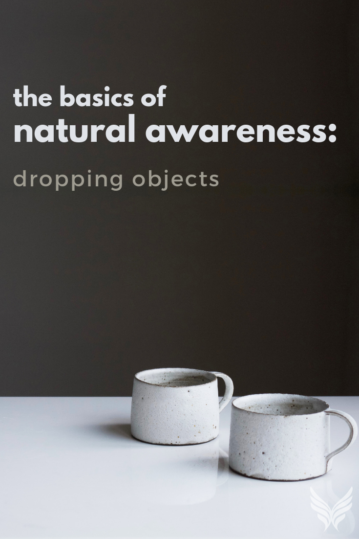 The Basics of Natural Awareness: Dropping Objects Pinterest