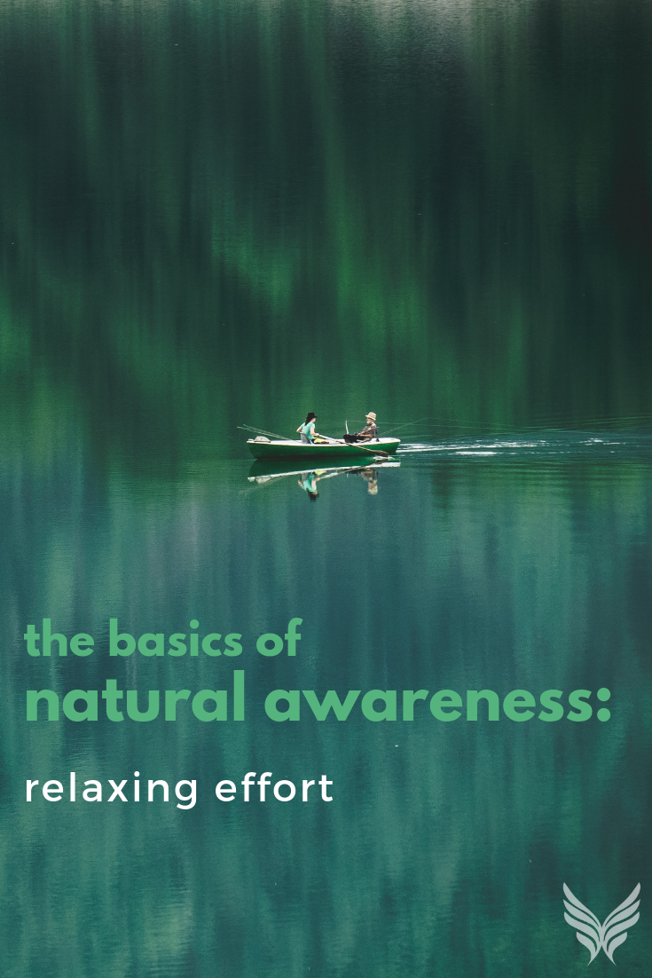 The Basics of Natural Awareness: Relaxing Effort Pinterest