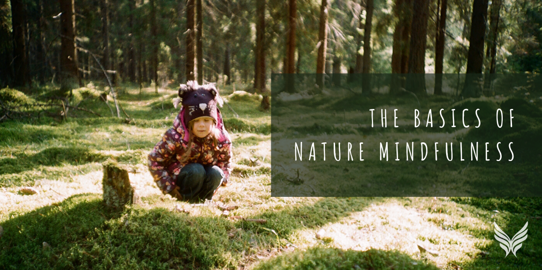 The basics of nature mindfulness