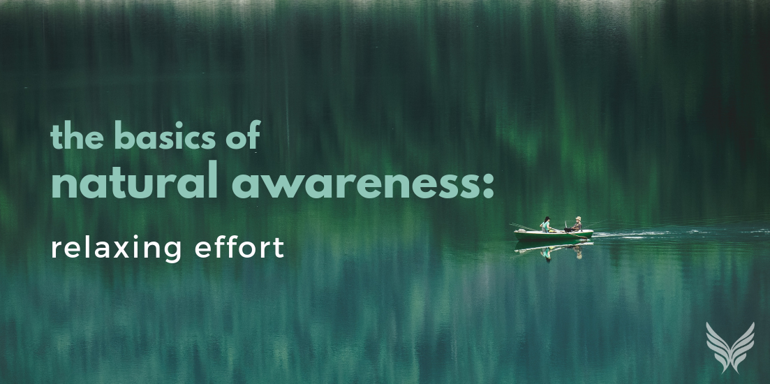 The Basics of Natural Awareness: Relaxing Effort Header Image