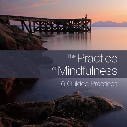 practicemind